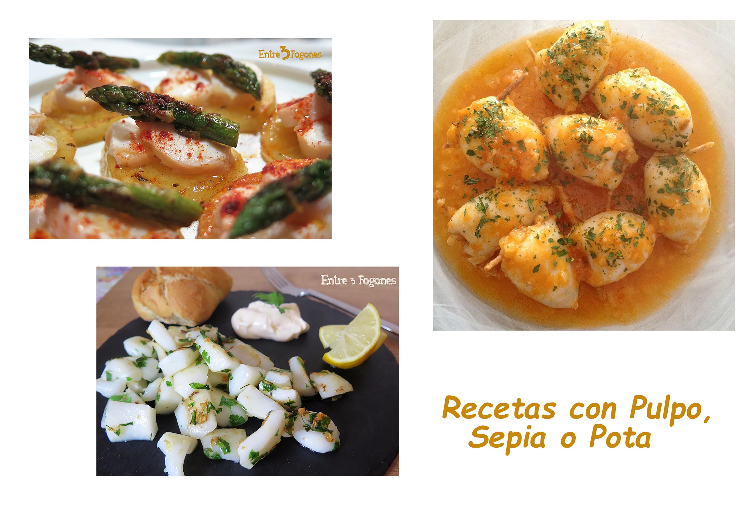 Photo of Recetas con Sepia, Pulpo o Pota. Las Mejores para el Verano con la Sirena