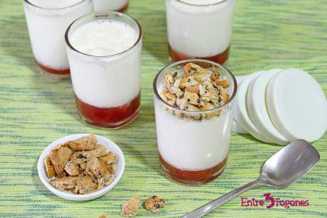 Receta Yogur Griego Natural Casero